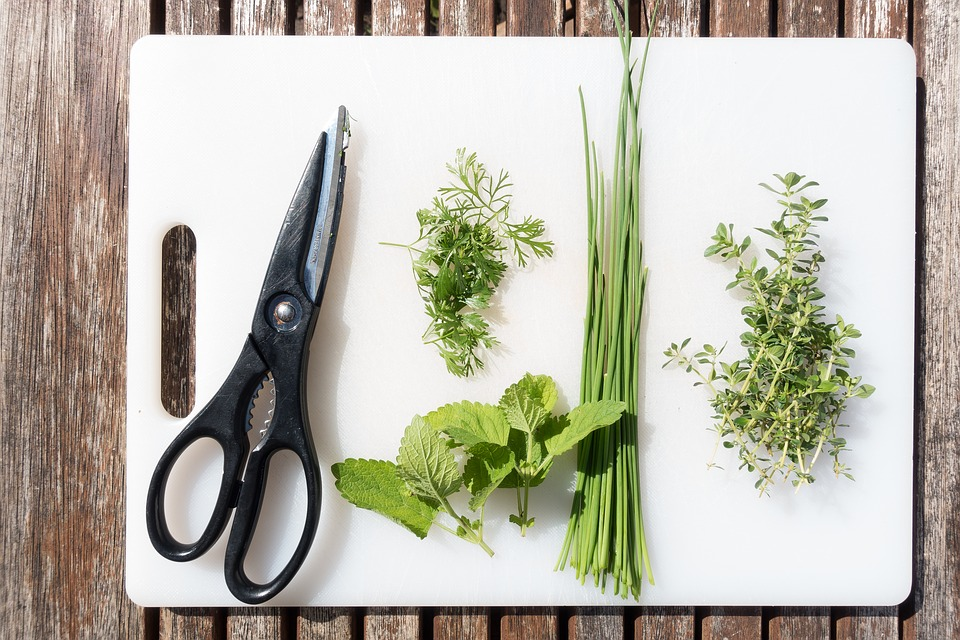 Pictures of herbs/Culinary Herbs
