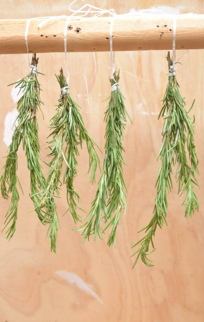 how-to-dry-rosemary